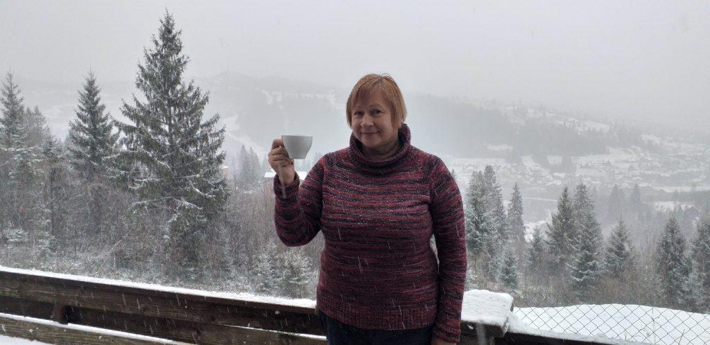 вид на горы из отеля Альпийский двор