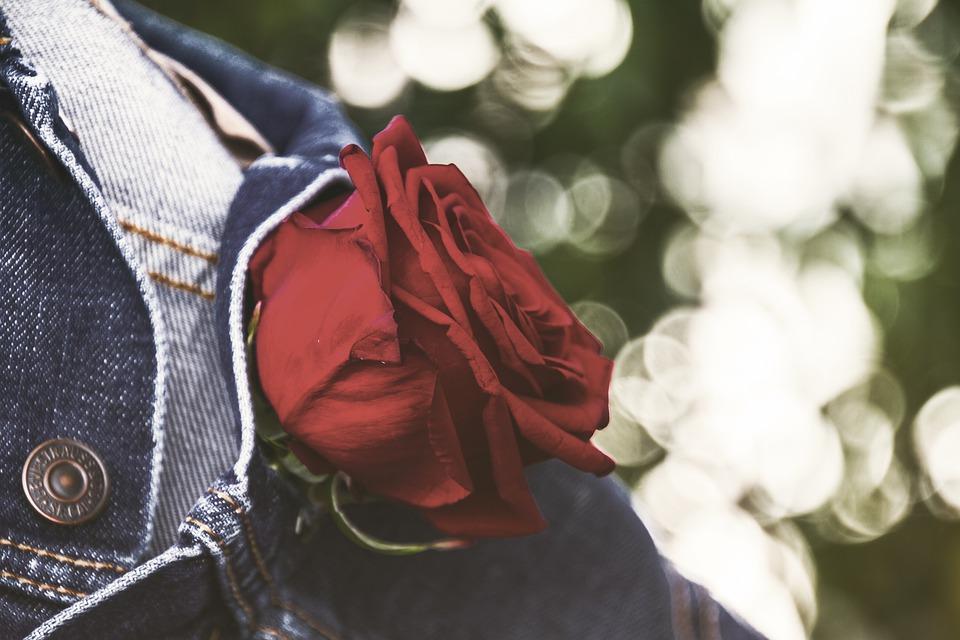 красная роза в петлице