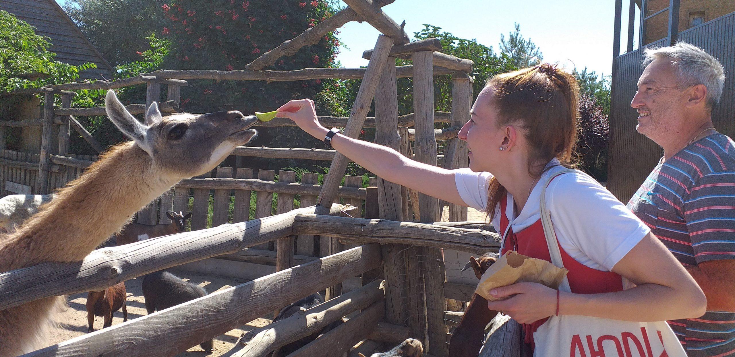 животные в Бердянском зоопарке Сафари