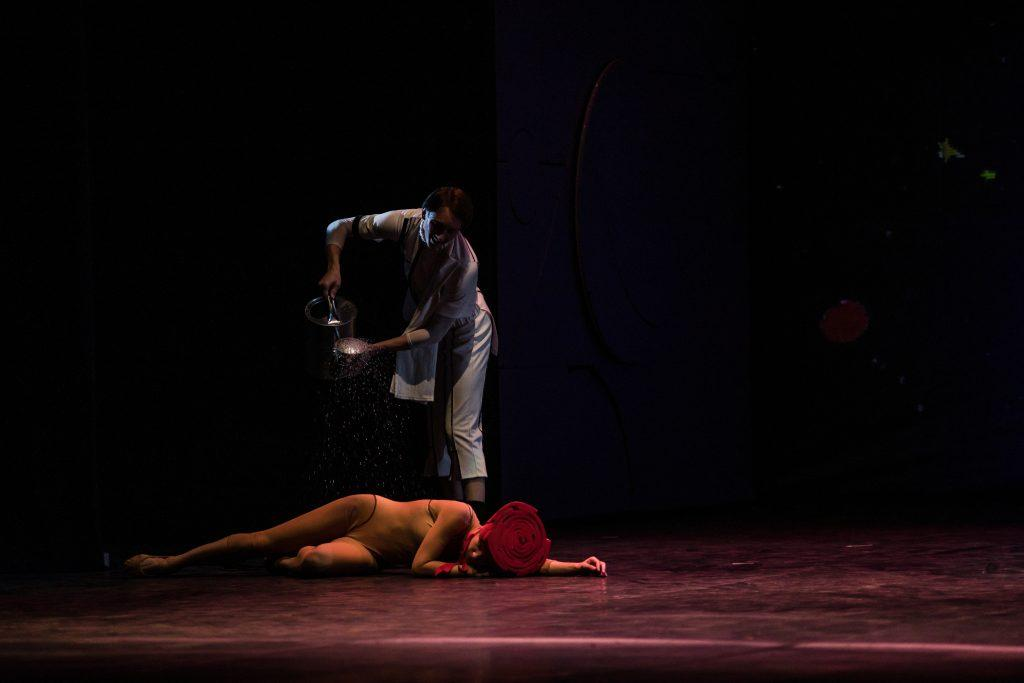Принц и Роза в балете Маленький принц