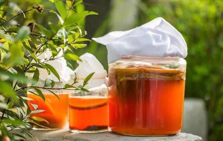как лечиться грибами чайным и молочным