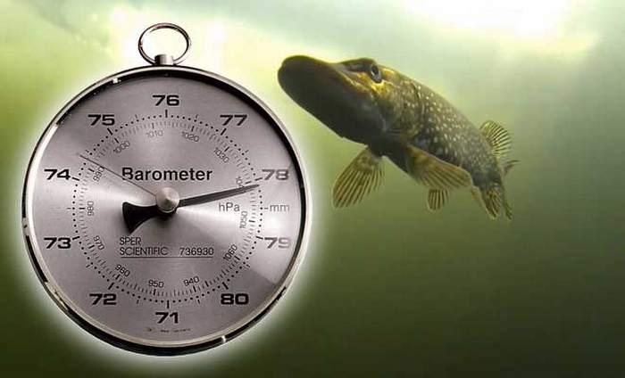 барометр для рыбака