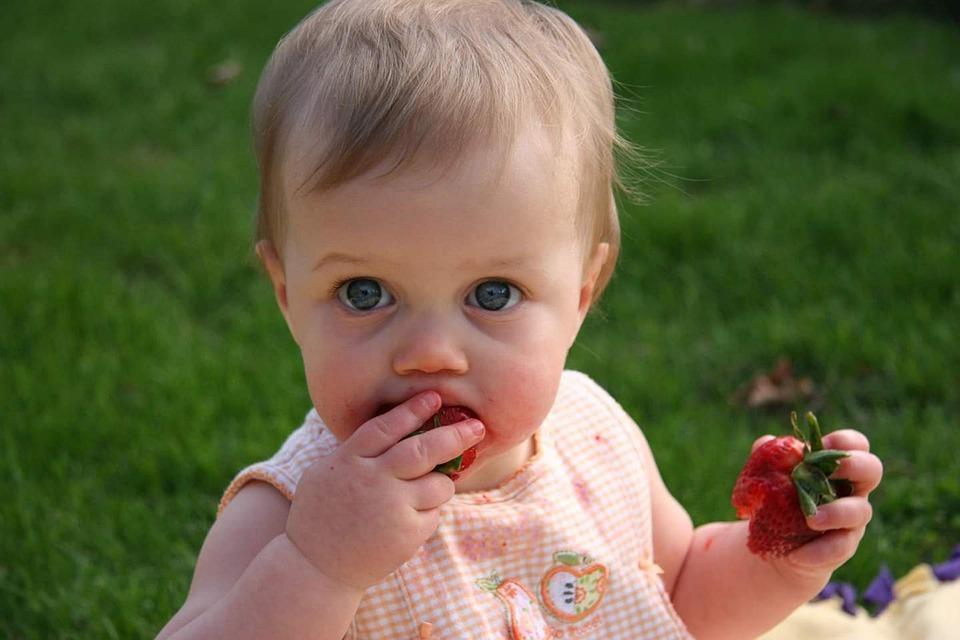 девочка кушает клубнику