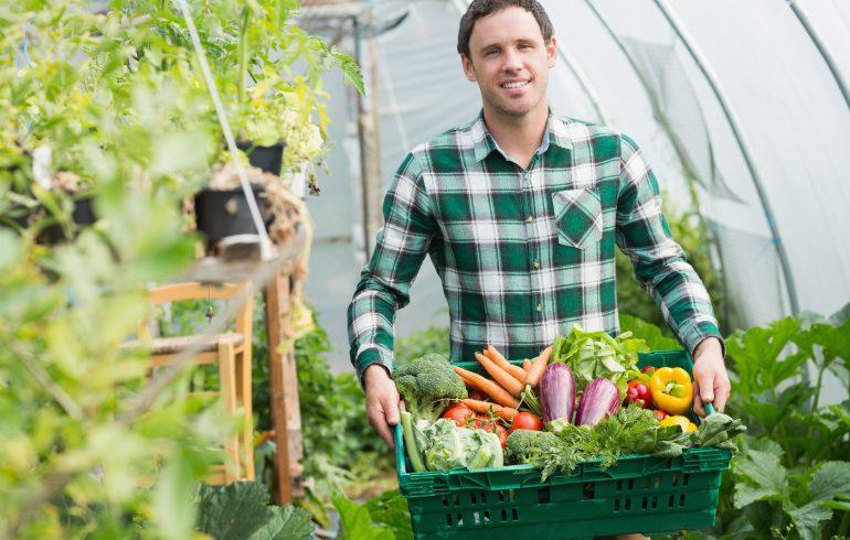 Огородные лайфхаки для хорошего урожая