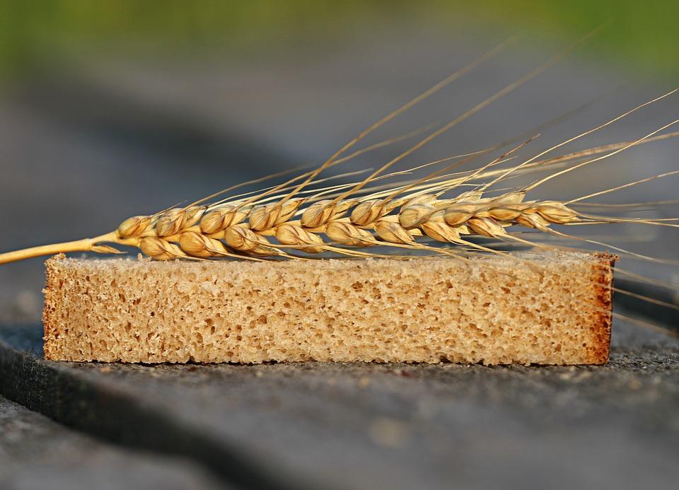 колосок пшеницы на хлебе