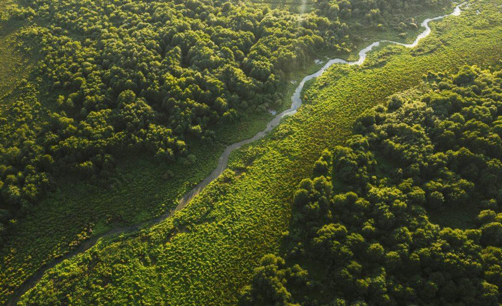 Охраняемые территории Кобулети в Аджарии