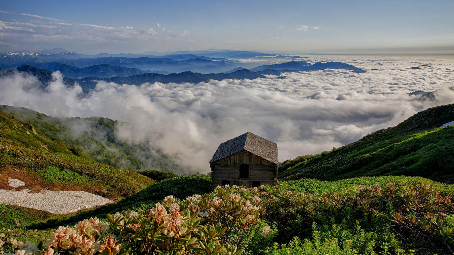 Заповедники Аджарии внесли в список Всемирного наследия ЮНЕСКО